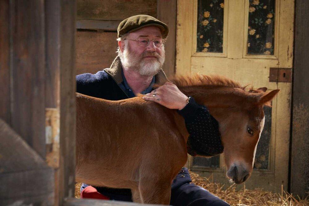 Dream Horse – Movie Review — Phoenix Film Festival